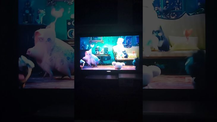 The Secret Life of Pets (2016) end credits (FX live channel)