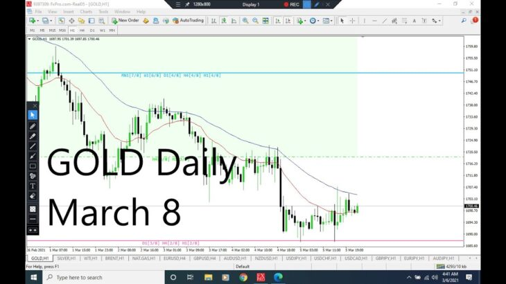 Gold Analysis for Monday March 8, 2021 by Nina Fx | XAUUSD Analysis (Daily Forecast)