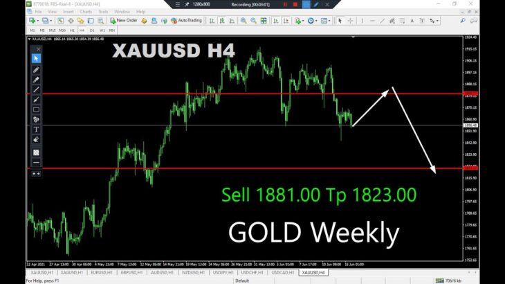 Gold Weekly Analysis on June 15, 2021 by Nina Fx