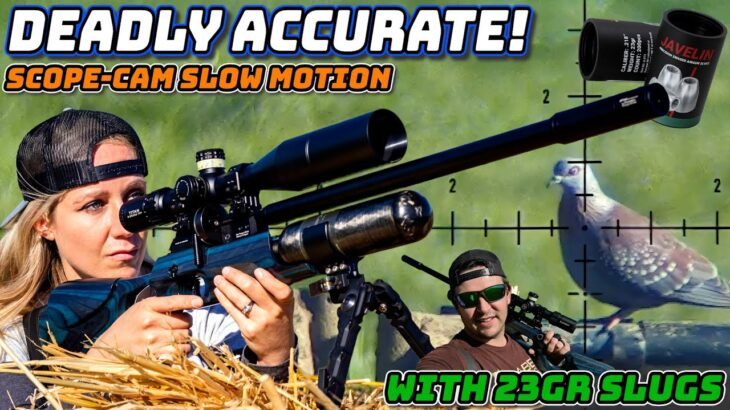 Deadly Accurate! | FX Crown MKII | Airgun Pest Control | 23gr Slugs | Scope-Cam Slow Motion