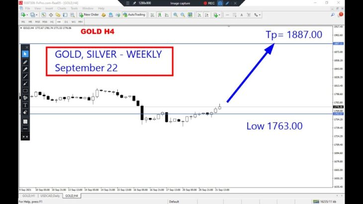 Gold and Silver Weekly Analysis on September 22, 2021 by Nina Fx
